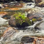 Large stones in the water. The rapid flow of the river.